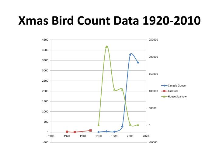Xmas Bird Count Data 1920-2010
