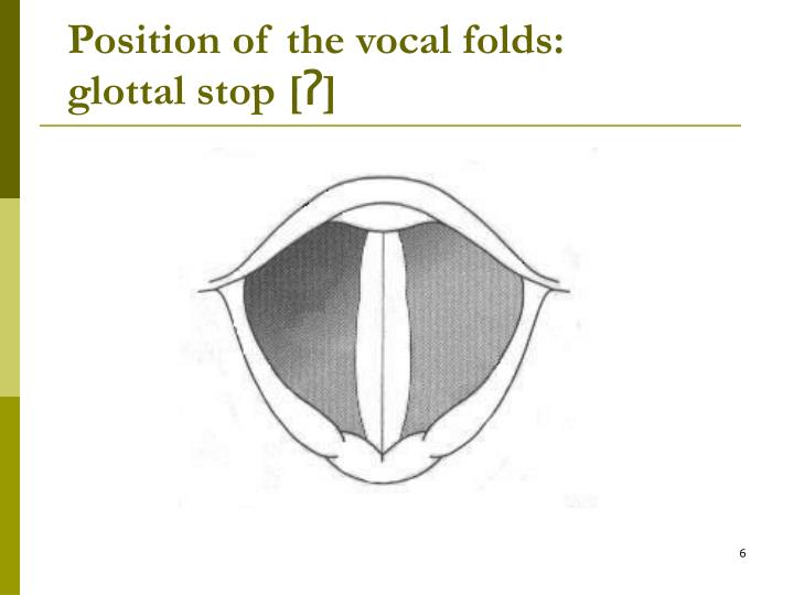 Position of the vocal folds: