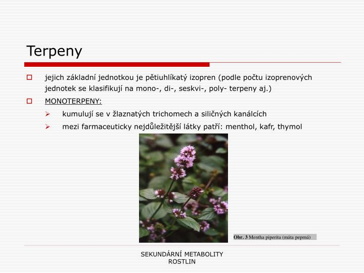 Terpeny