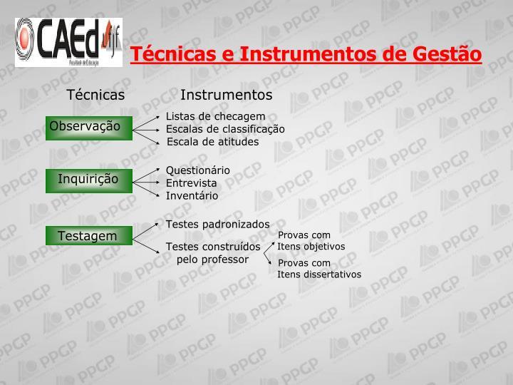 Técnicas e Instrumentos de Gestão