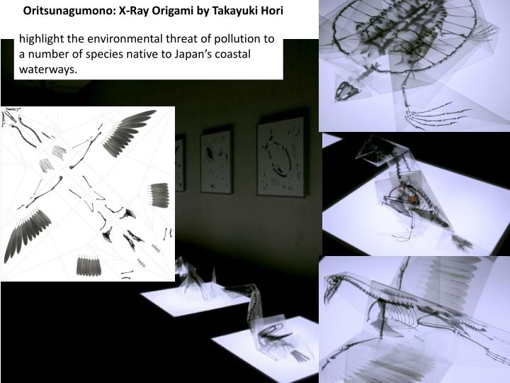 Oritsunagumono: X-Ray Origami by Takayuki Hori