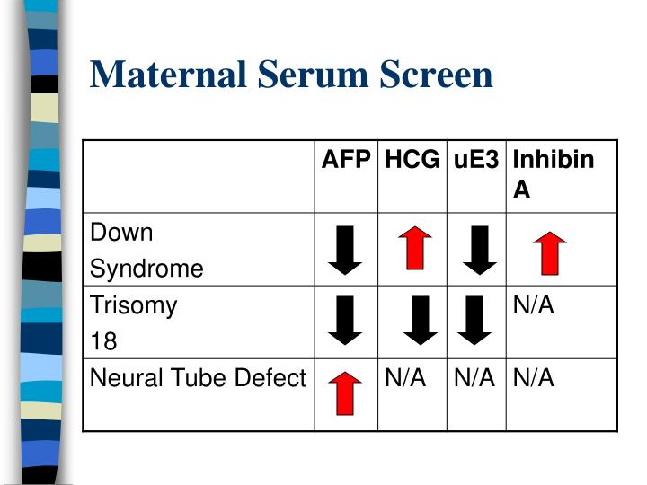 Maternal Serum Screen