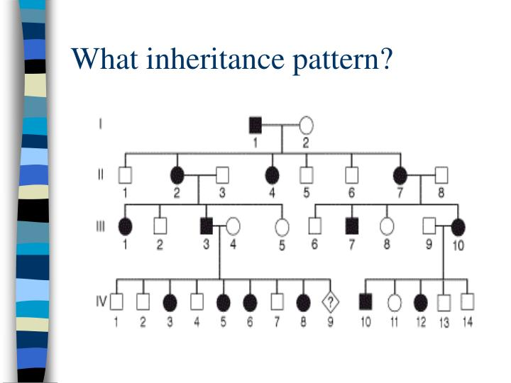 What inheritance pattern?