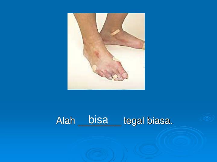 Alah ________ tegal biasa.
