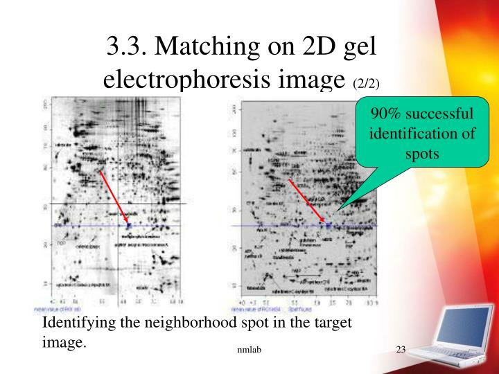 3.3. Matching on 2D gel electrophoresis image