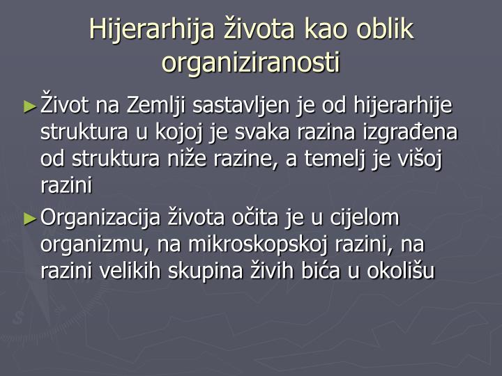 Hijerarhija života kao oblik organiziranosti