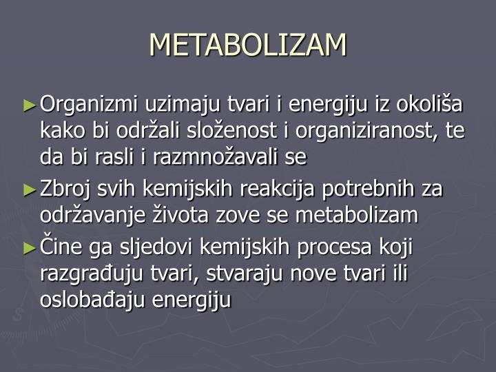 METABOLIZAM