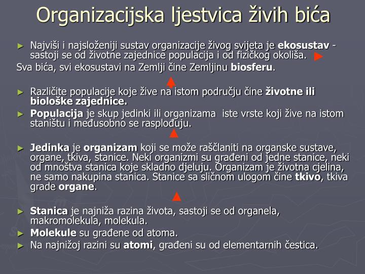 Organizacijska ljestvica živih bića