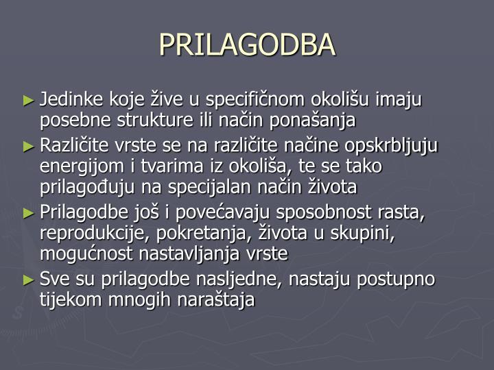 PRILAGODBA