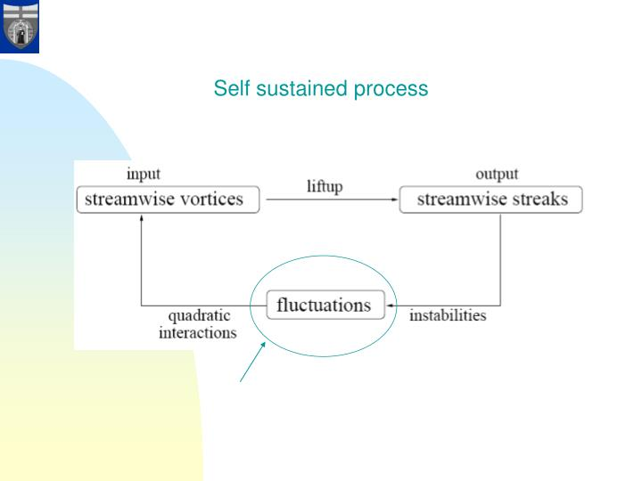 Self sustained process