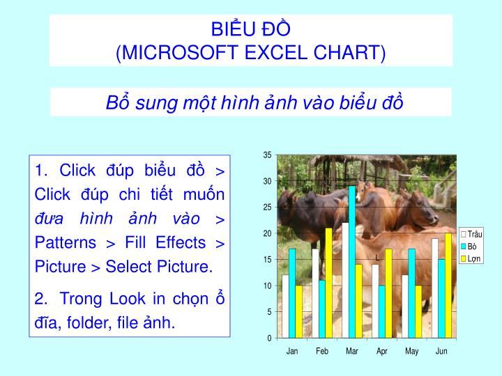 Click đúp biểu đồ