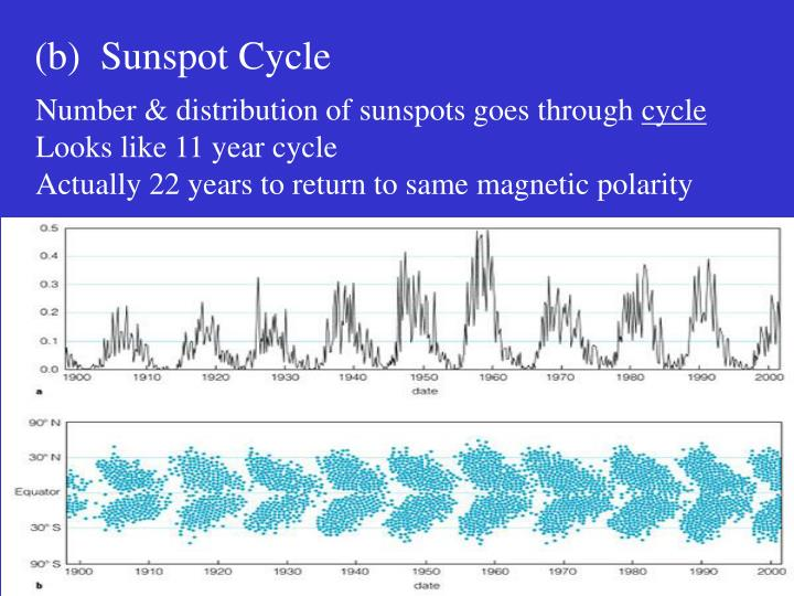 (b)  Sunspot Cycle