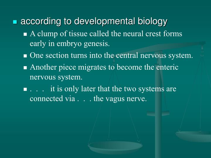 according to developmental biology