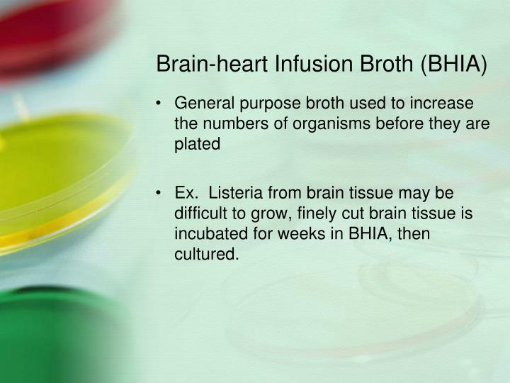 Brain-heart Infusion Broth (BHIA)