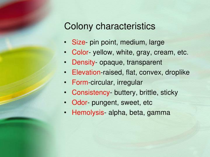Colony characteristics