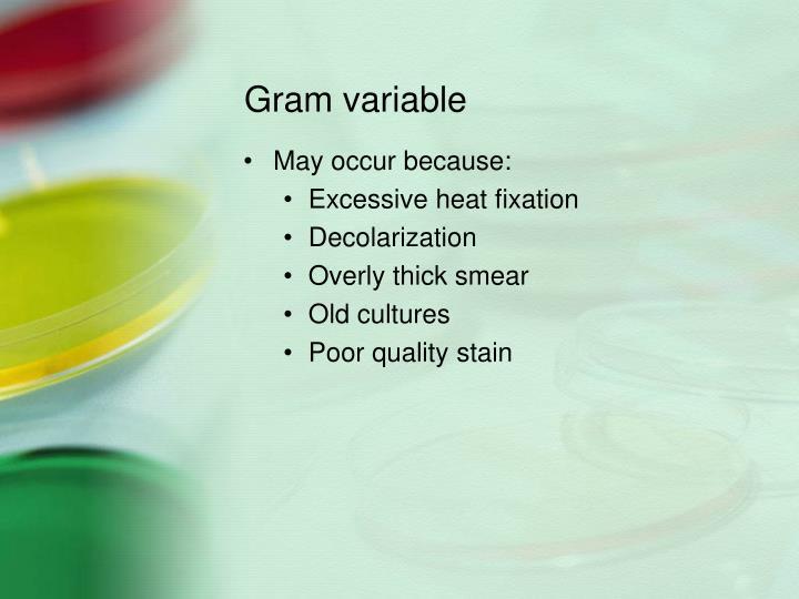 Gram variable