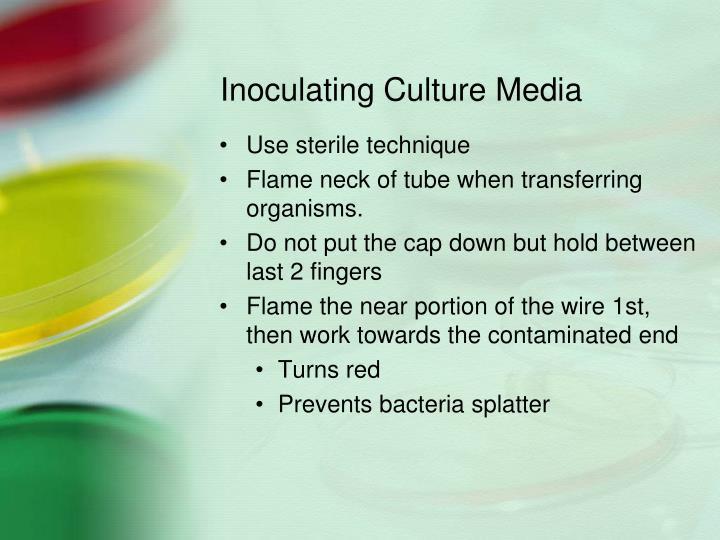 Inoculating Culture Media