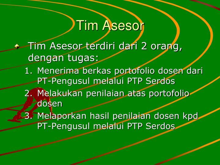 Tim Asesor