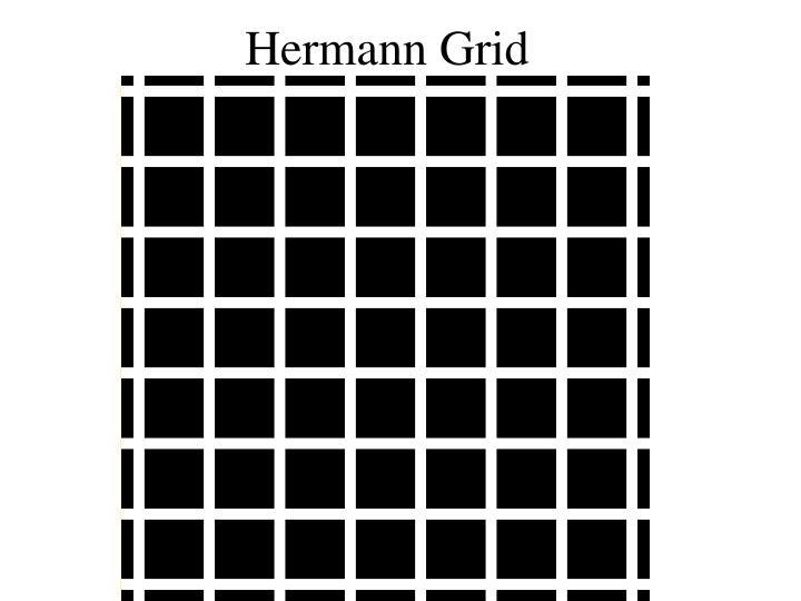 Hermann Grid