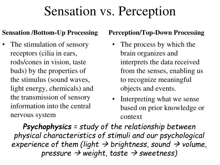 Sensation vs perception1
