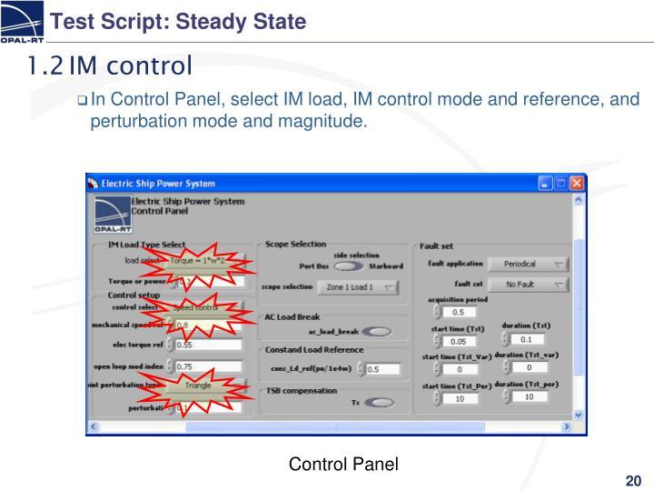 Test Script: Steady State