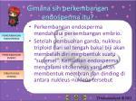 gimana sih perkembangan endosperma itu