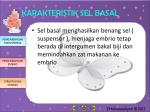 karakteristik sel basal