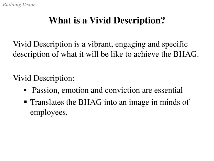 What is a Vivid Description?