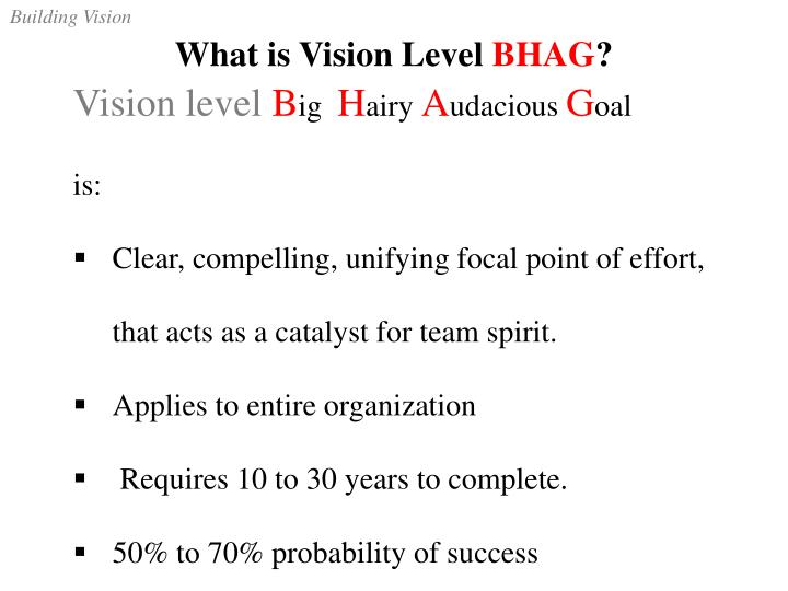 What is Vision Level