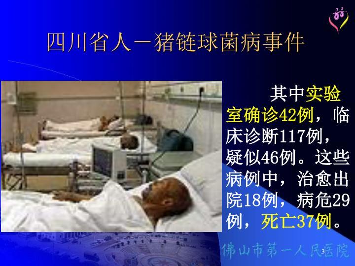 四川省人-猪链球菌病事件