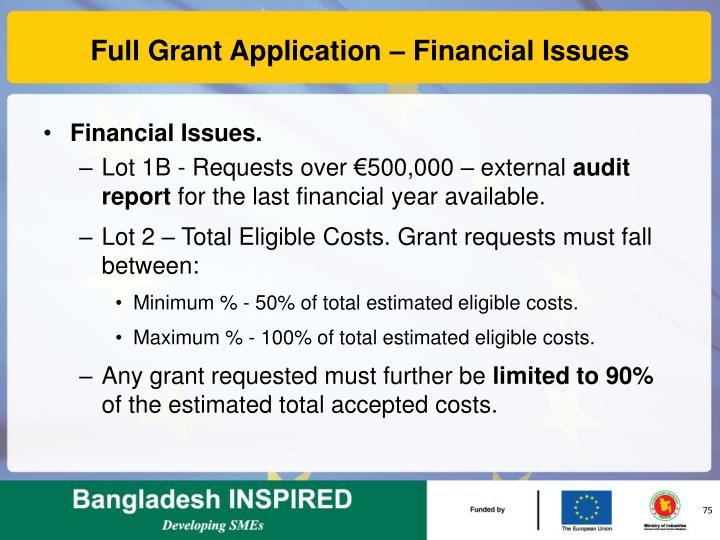 Full Grant Application – Financial Issues