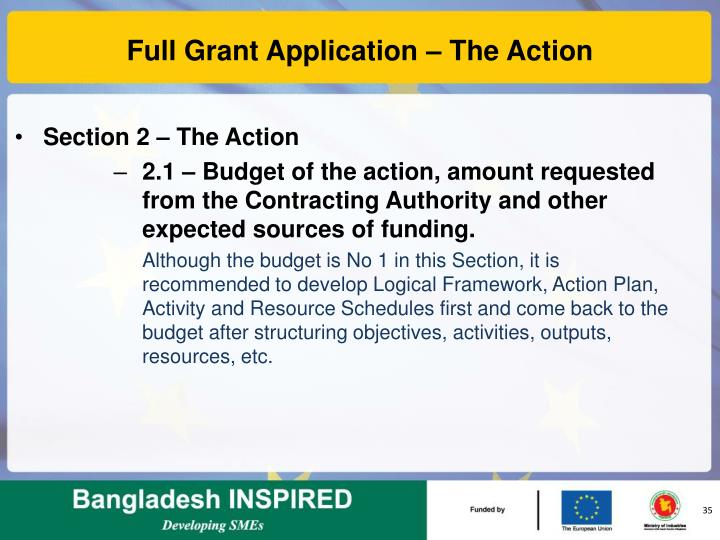 Full Grant Application – The Action