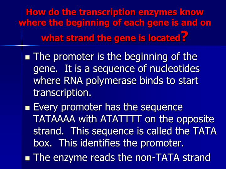 How do the transcription enzymes know where the beginning of each gene is and on what strand the gene is located