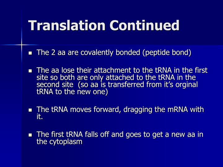 Translation Continued
