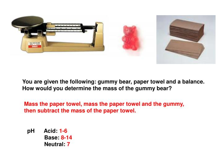 You are given the following: gummy bear, paper towel and a balance.