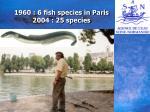 1960 6 fish species in paris 2004 25 species