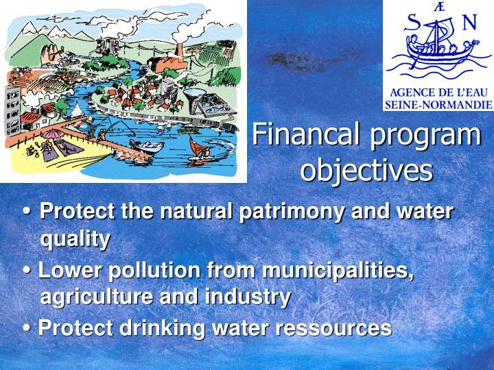 Financal program objectives