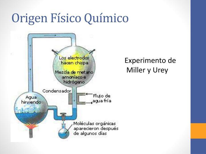Origen Físico Químico