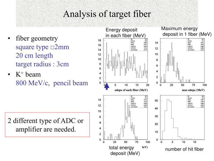 Analysis of target fiber