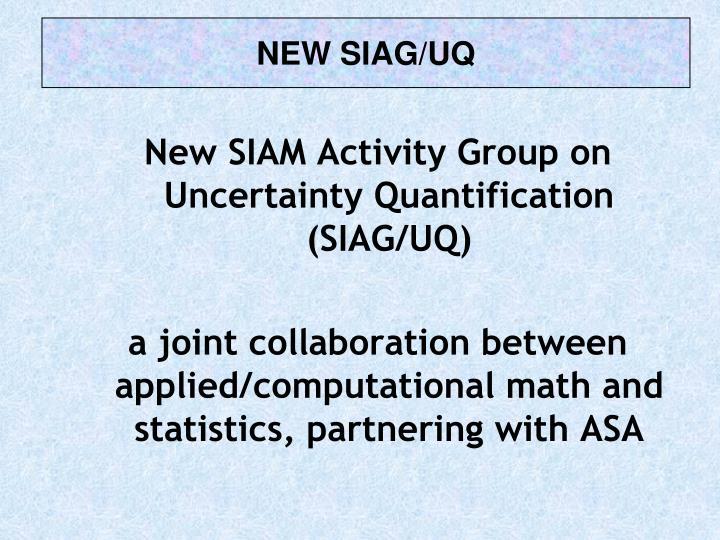 NEW SIAG/UQ