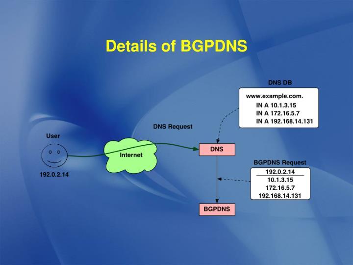 Details of BGPDNS