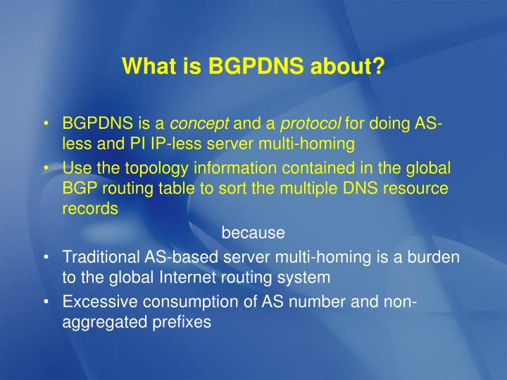 What is bgpdns about