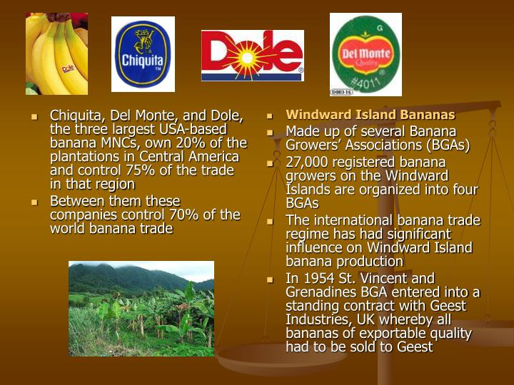 Chiquita, Del Monte, and Dole, the three largest USA-based banana MNCs, own 20% of the plantations in Central America and control 75% of the trade in that region