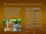 st vincent s banana growers