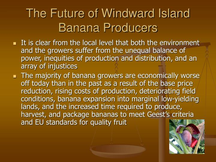 The Future of Windward Island Banana Producers
