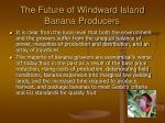the future of windward island banana producers