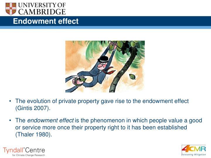 Endowment effect