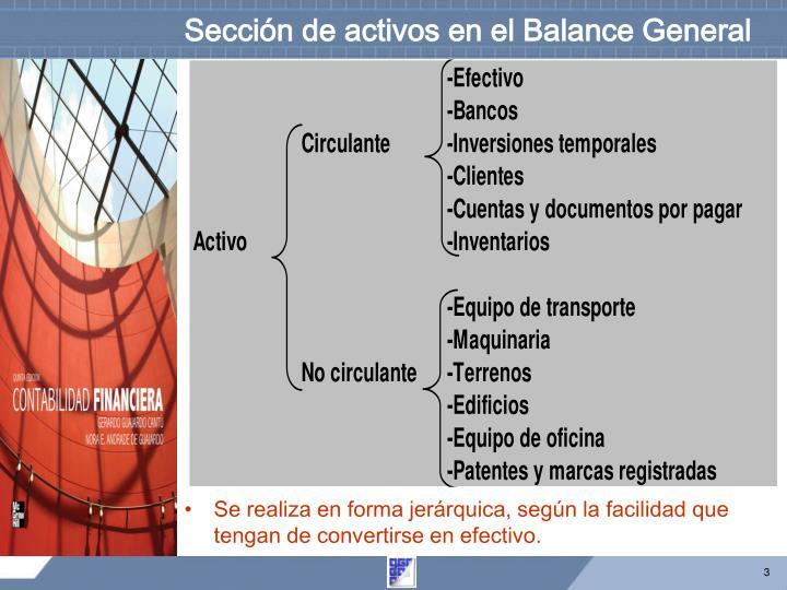 Sección de activos en el Balance General