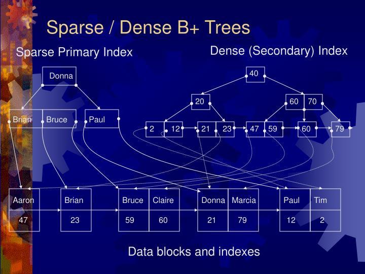 Sparse / Dense B+ Trees