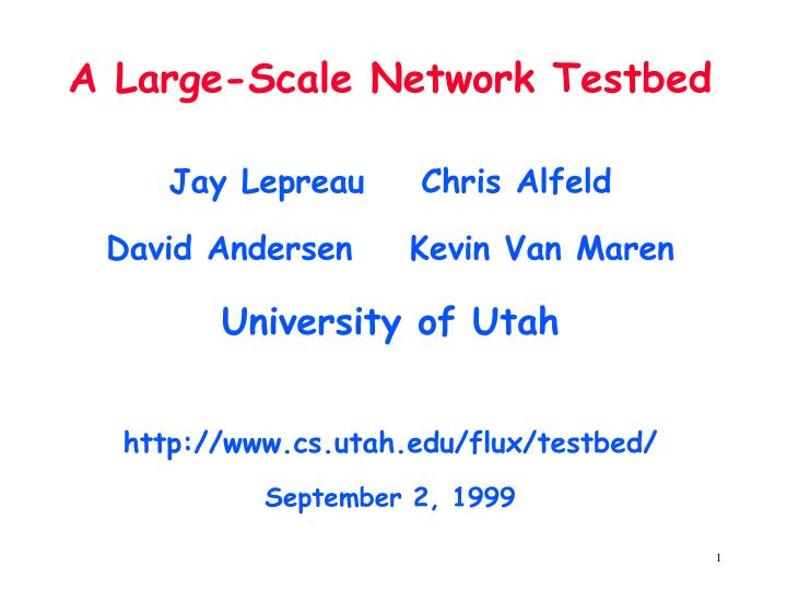 A large scale network testbed